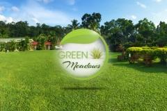 Green-Meadows-(cover-photo)